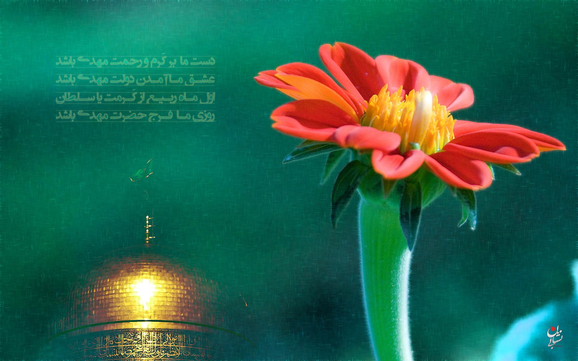 http://bi-neshan.ir/wp-content/uploads/2012/01/Mahdi-13.jpg