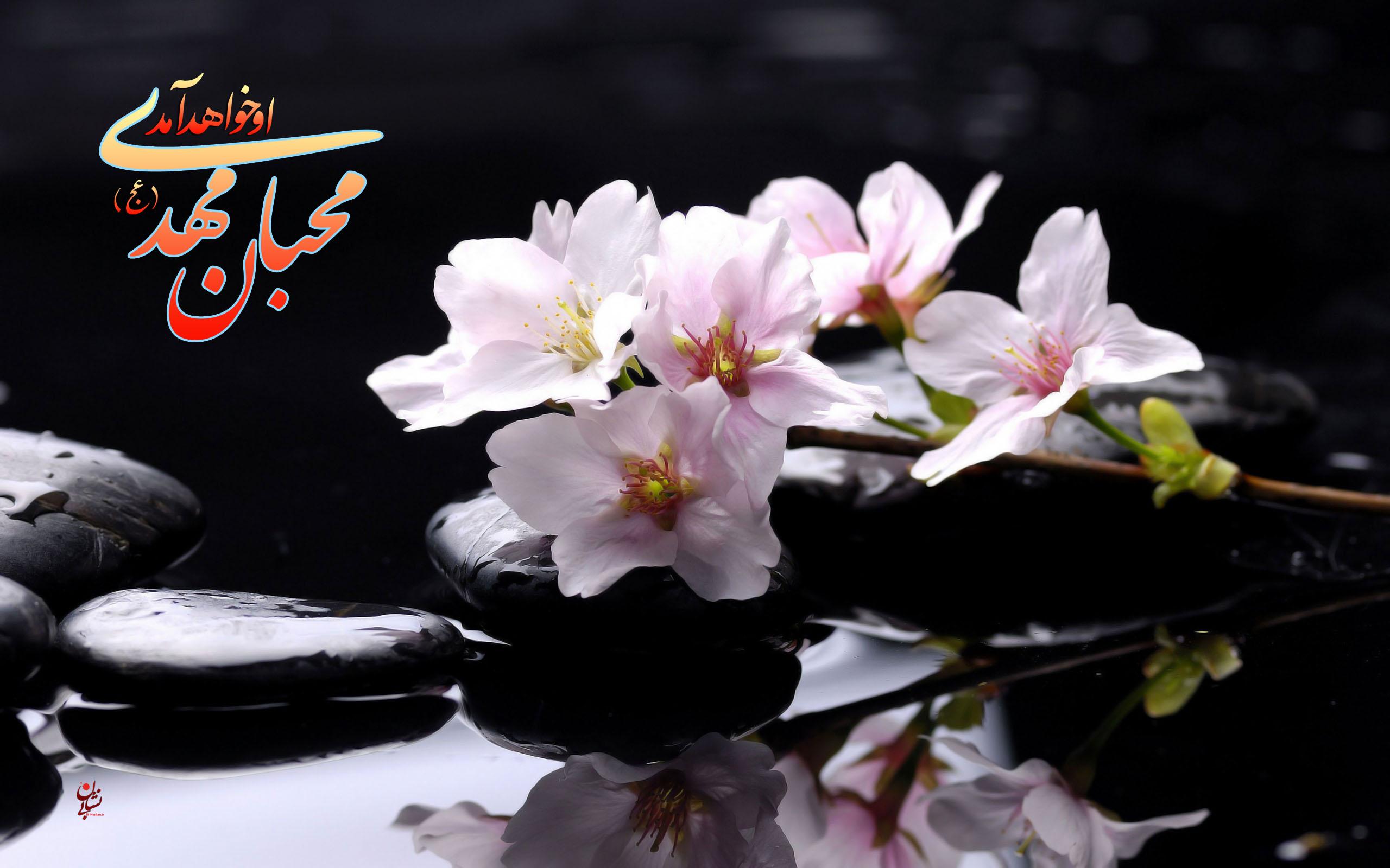 http://bi-neshan.ir/wp-content/uploads/2013/01/E.Mahdiaj-7.jpg