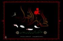 شهادت حضرت محسن بن علی(ع) ۴