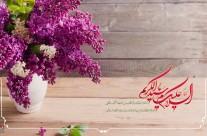 ولادت حضرت عبدالعظیم حسنی(ع) ۴