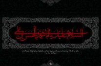 شهادت امام حسن مجتبی(ع) ۹