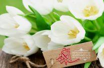 ولادت حضرت عبدالعظیم حسنی(ع) ۵