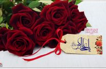 ولادت حضرت علی اکبر حسین(ع) ۷